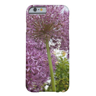 Allium Flower Barely There iPhone 6 Case