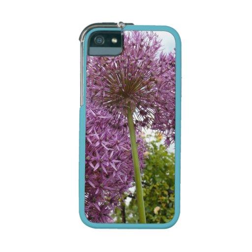 Allium Flower iPhone 5 Covers