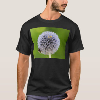 allium flower in the garden T-Shirt