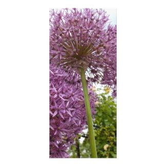 Allium Flower Rack Card Template