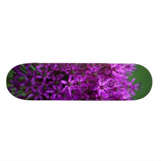 Allium Skateboard Decks