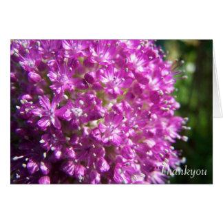 Allium Thankyou Card