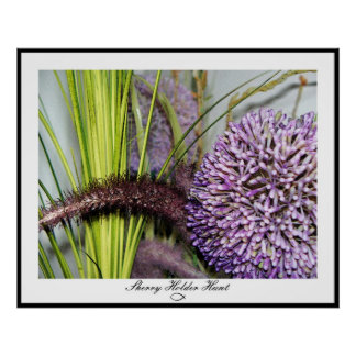 Allium Watercolor - Colossal Size Poster