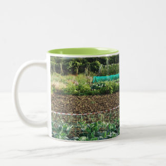 Allotment Two-Tone Coffee Mug