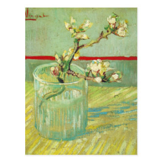 Almond Blossom Branches in Glass Van Gogh Fine Art Postcard
