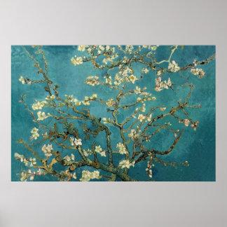 Almond Blossom Poster