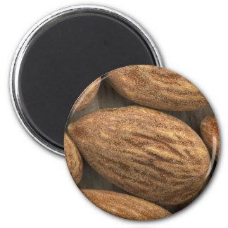 Almond Closeup 2 Inch Round Magnet