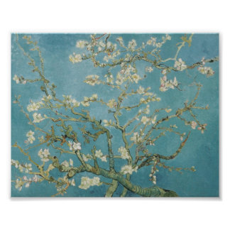 Almond tree by van gogh poster