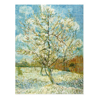 Almond tree postcard
