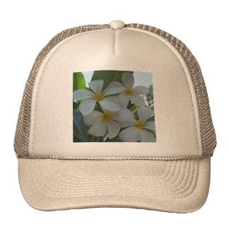 Almost Edible Frangipani Hats