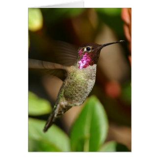 almost - Hummingbird Card