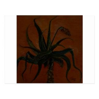 Aloe Postcard