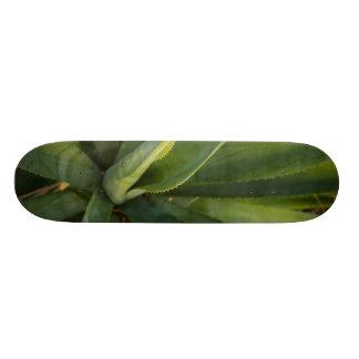 Aloe Vera Custom Skate Board