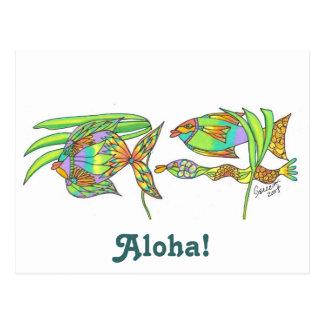 Aloha Fish Postcard