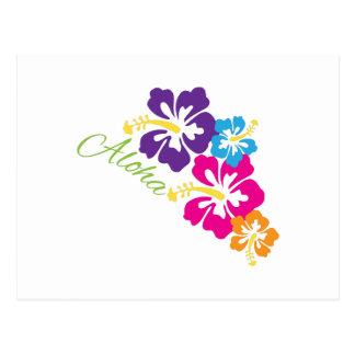 Aloha Flowers Postcards