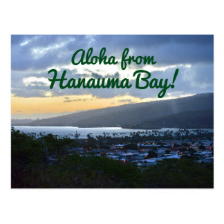 Aloha From Hanauma Bay Postcard