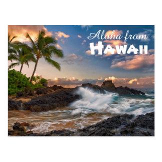 Aloha from Hawaii Postcard