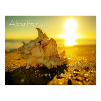 Aloha from ...Sunny Hawaii Postcard