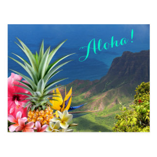 Aloha Hawaii Landscape and Flora Postcard