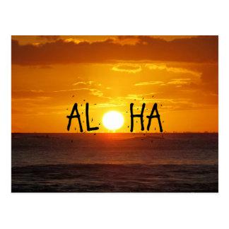 Aloha Hawaii Sunset Ocean Postcard
