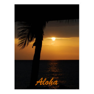 Aloha Hawaiian Sunset Cards Postcard