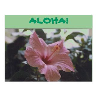 ALOHA! - postcard