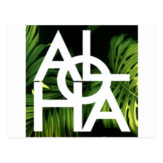 Aloha White Graphic Hawaii Palm Postcard