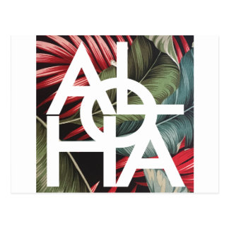 Aloha White Square Red Palm Postcard