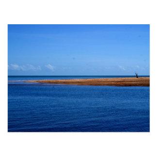 Alone Darwin Beach Postcard