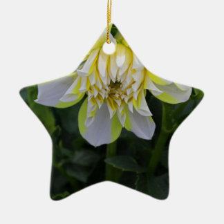 Alone Here Tonight Ceramic Star Ornament