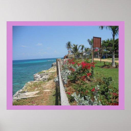 Along Hospital Park Montego Bay Print on Canvas