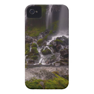 Along the Banks of Burney Creek iPhone 4 Covers