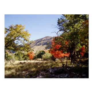 Along the Road - Grassland Postcard