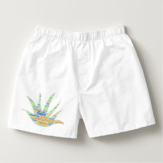 Alove Vera illustrated with cities of Florida USA Boxers