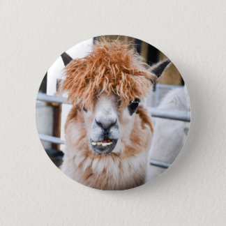 Alpaca 2 Inch Round Button
