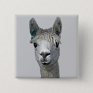 Alpaca 2 Inch Square Button
