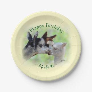 Alpaca Baby Birthday 7 Inch Paper Plate