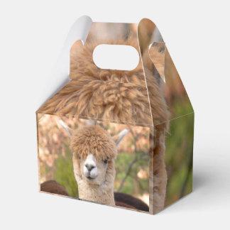 Alpaca Gift Box