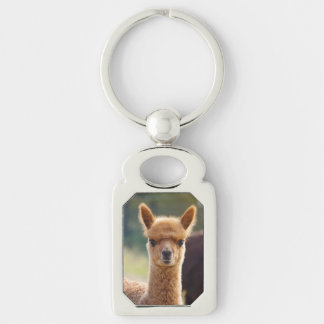 Alpaca Key Chains