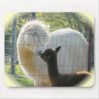 Alpaca Kisses Mousepad