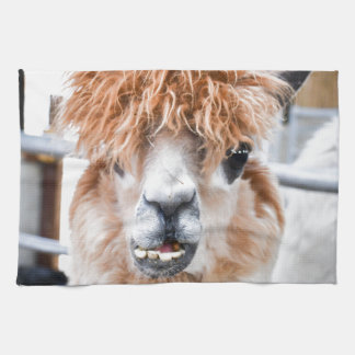 Alpaca Kitchen Towel