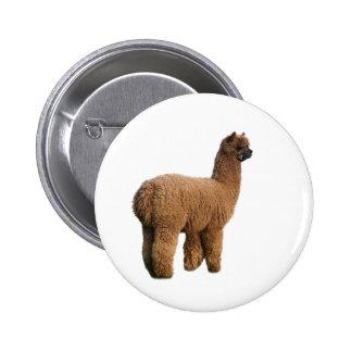 Alpaca Magic Button