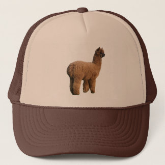 Alpaca Magic Cap