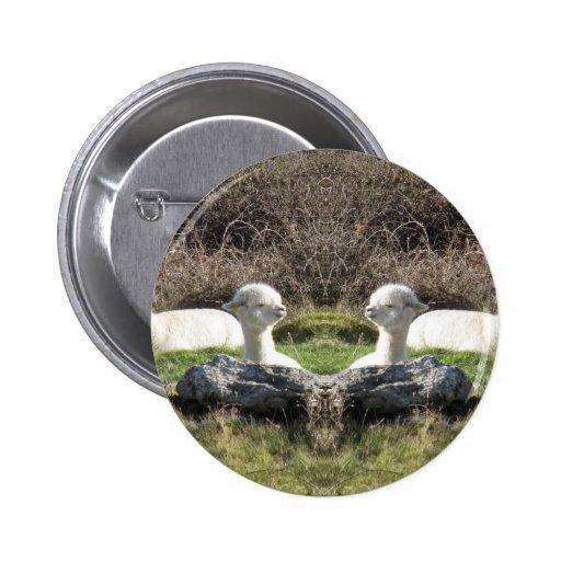 Alpaca mirror pinback button