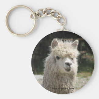 Alpaca, Parque Llaviucu, Ecuador Keychain
