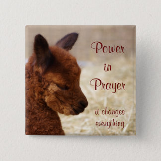 Alpaca Prayer Pin