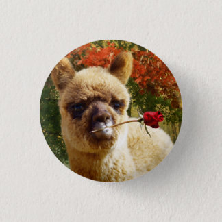 Alpaca Rose Button