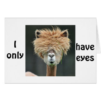 """ALPACA SAYS """"I ONLY HAVE EYES FOR YOU"""" GREETING CARD"""