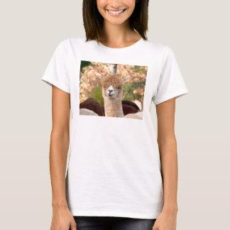 Alpaca tshirts