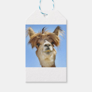 Alpaca with Crazy Hair Gift Tags